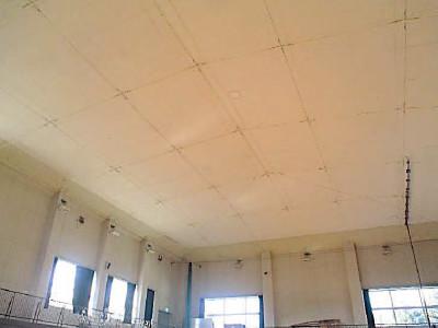 和水町菊水東小学校 防護ネット設置後